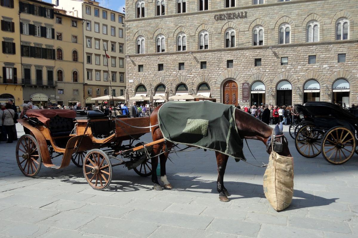 イタリア、フィレンツェ、イタリア風景